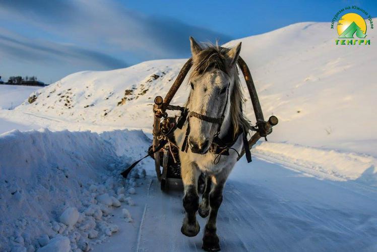 Снежный Крака - 7